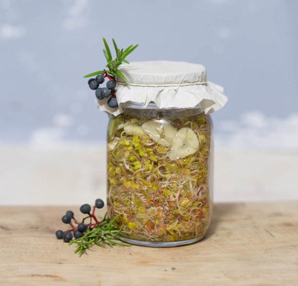 Kiszone kiełki przepis kiszonki dzika fermentacja